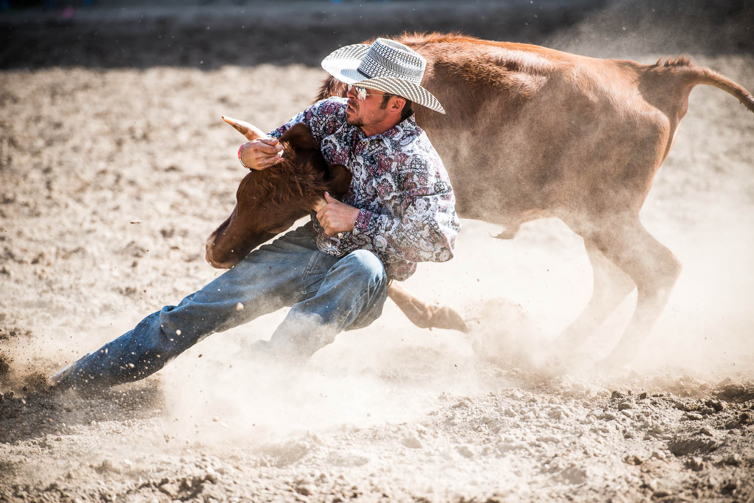 rodeo-4413